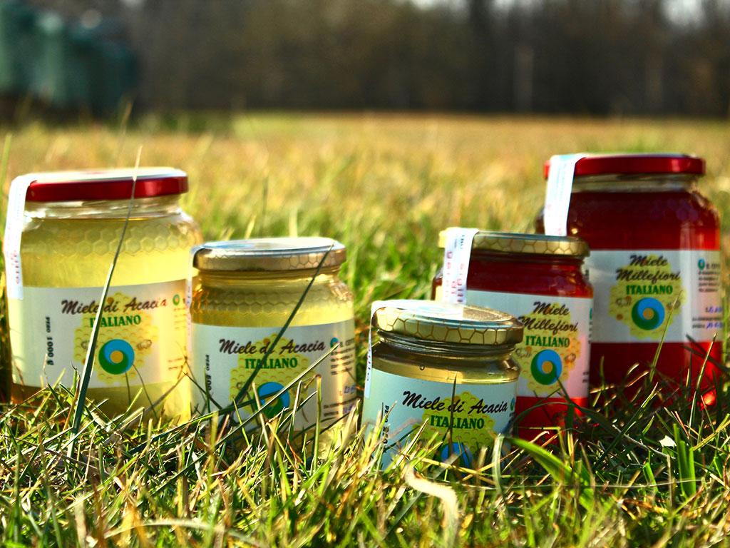 miele artigianale azienda agricola il centro